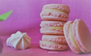 French no almond macarons